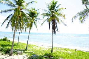 L'Outremer - Accès direct plage