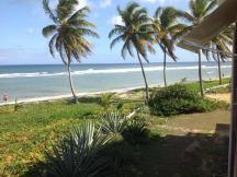 Vue mer et cocos